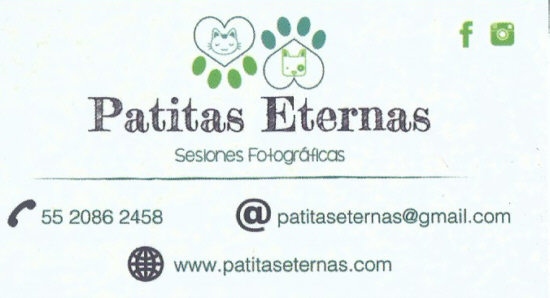 Patitas Eternas 01 jpg
